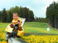 Kind beim Sommerrodeln